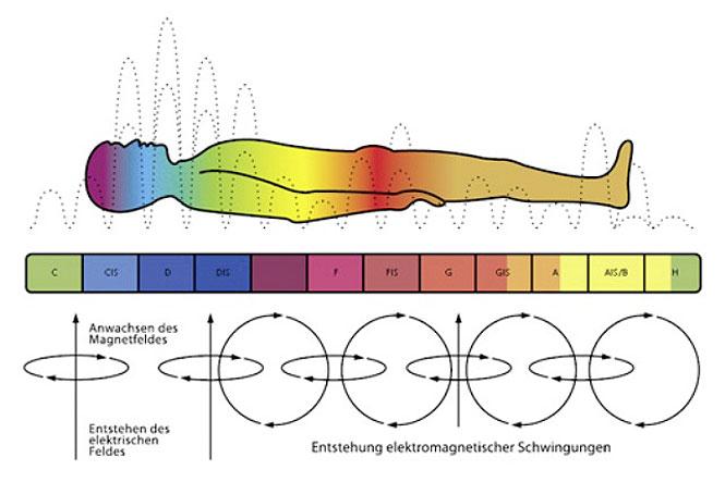 http://www.netzwerk-schwingung.de/bilder-therapeuten/kosmoston-02.jpg